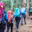 Expedição Deuter em Três Picos / Salinas, Nova Friburgo