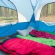 SACO DE DORMIR: como escolher e comprar para acampamento